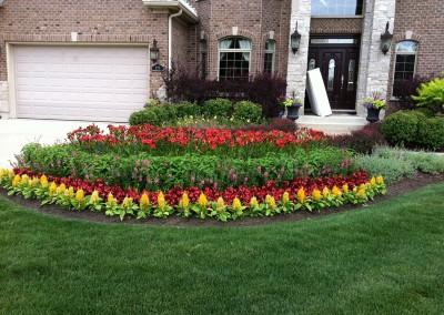Annual & Perennial Landscape Design