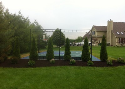 Bushes & Shrubs Installation