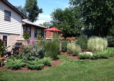 Bushes & Perennial Installation
